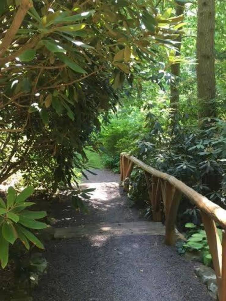 Buck Garden path