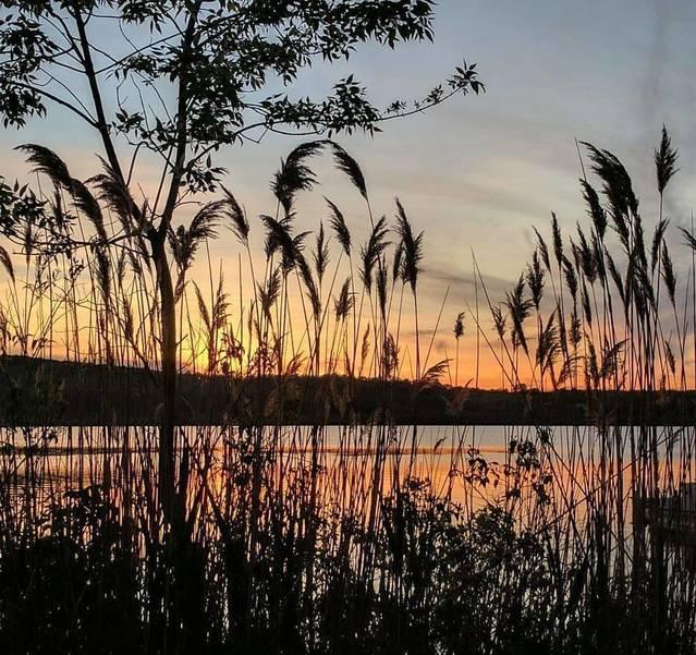Budd Lake.jpg