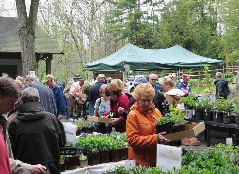 Buck Garden plant sale
