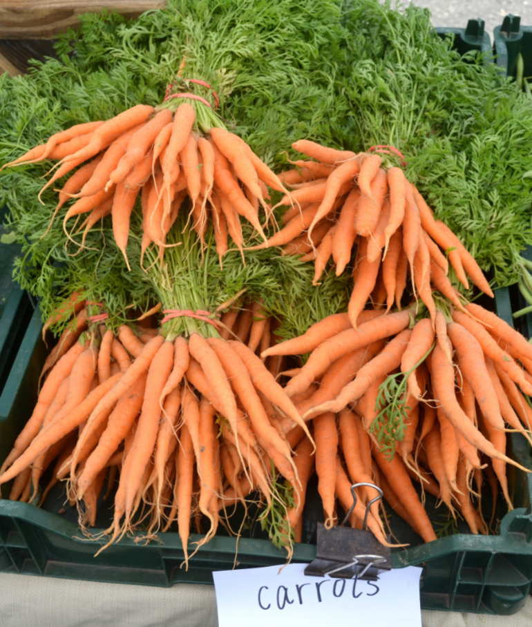 Carrots at the Scotch Plains Farmers Market.