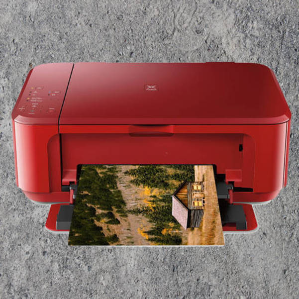 Best crop cf2908e83d2418529876 cabin print500