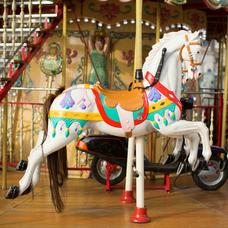 Carousel image 4d85da7607c9745e0cd1 carousel stock 1