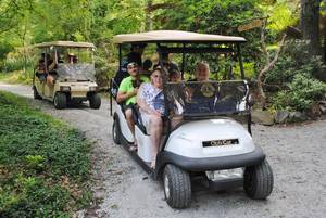 Free Guided Tours of Laurelwood Arboretum