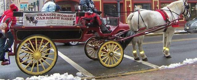 Top story c703596a5a0407193cee carriage horse ride