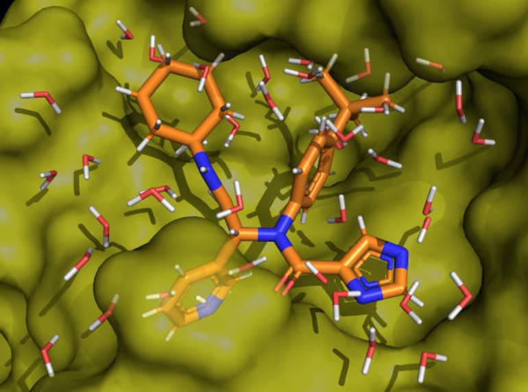 CCM.Covid Protein.jpg