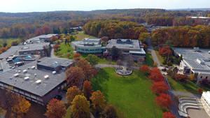 Carousel image 20c635c678bede80dc0c ccm.aerial fall
