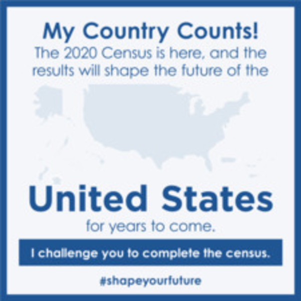 Census Poster.png