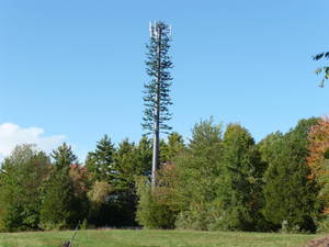 Carousel image 90eb764fcdbf057abb36 cell phone tower disguised 2008