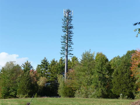 Top story 53a90c97d0bffe771419 cell phone tower disguised 2008