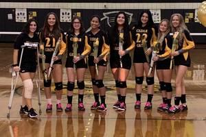Girls Volleyball: Cedar Grove Tops West Caldwell Tech on Senior Night