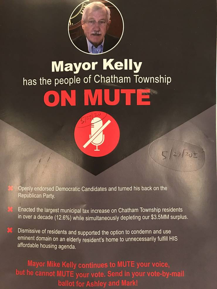 Chatham Township, NJ - A. Felice _ M. Hamilton campaign flyer re CTC Republican primary Tu 7_7_2020 doc dated approx 5_27_2020page2of2.jpg