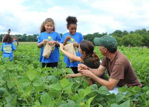 Carousel image 69a21f40a86b6b24752d chip and kyra picking beans with youth 7.26.17