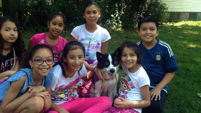 Top story e616924337e3c36944dc children group with dog