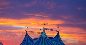 Carousel image 2b3b10d795111fa66f77 circus celebration arbor