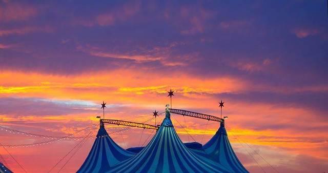 Top story 2b3b10d795111fa66f77 circus celebration arbor