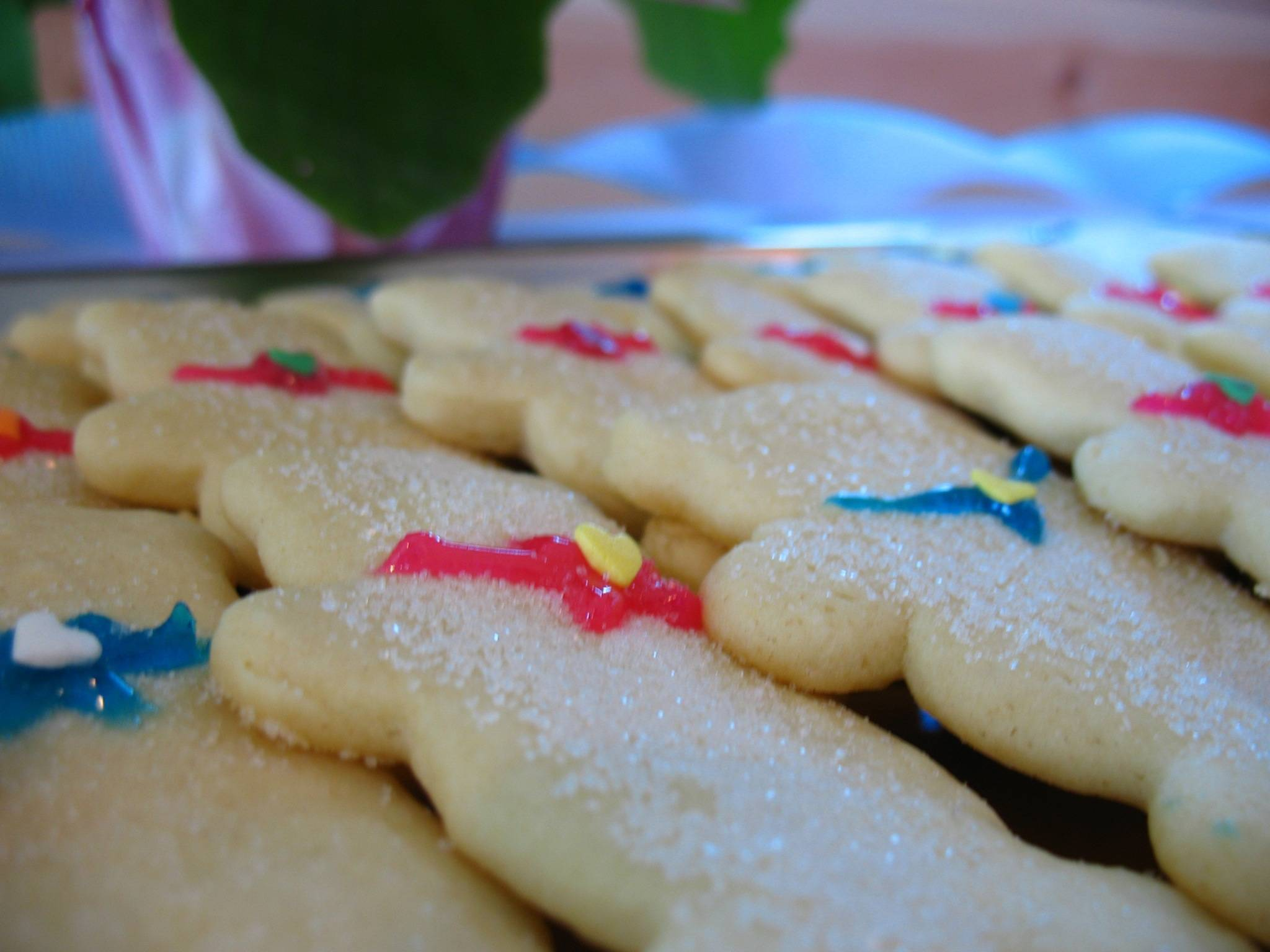 Scotch Plains Public Library to Host Teen Cookie Wars