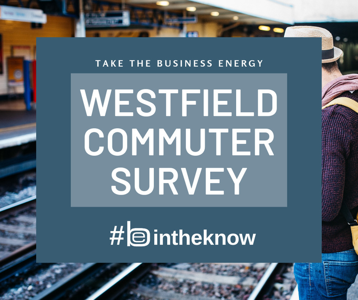 CommuterSurvey-new.png