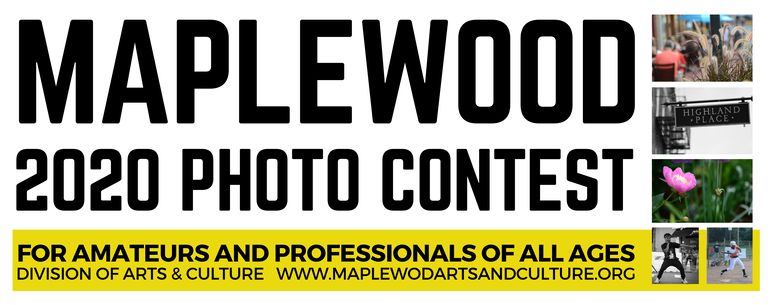 Copy of Poster Maplewood photo contest.png