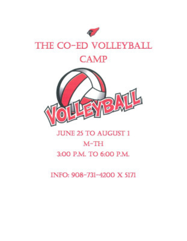 Co-Ed Volleyball Camp.png