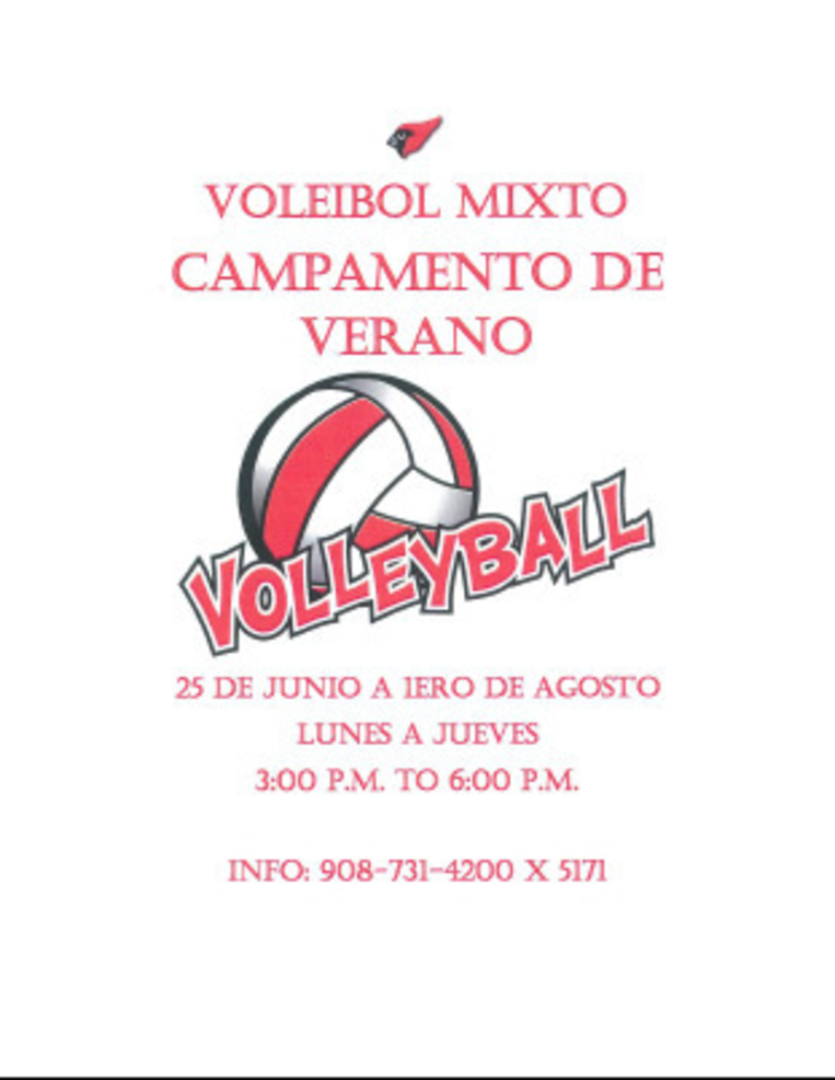 Co-Ed Volleyball Camp Spanish.png