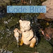 Carousel image 65bccbd9311eec29ff37 code blue