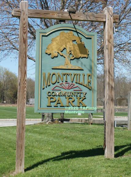 Top story a2af53a60d047ef23cee community park  2020 tapinto montville