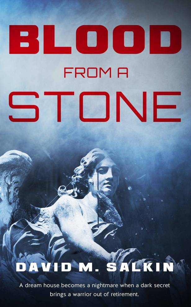"""Blood From a Stone"" is the new thriller from David M. Salkin, and follows a wounded warrior who discovers a dark secret in his new dream home that could stretch all the way to the White House."