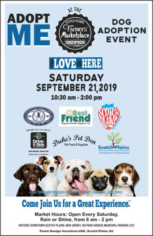 Dog Adoption 2019.png