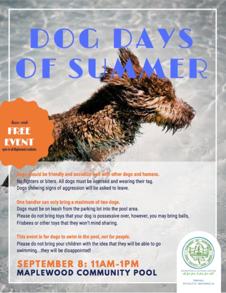 dog days of summer.png