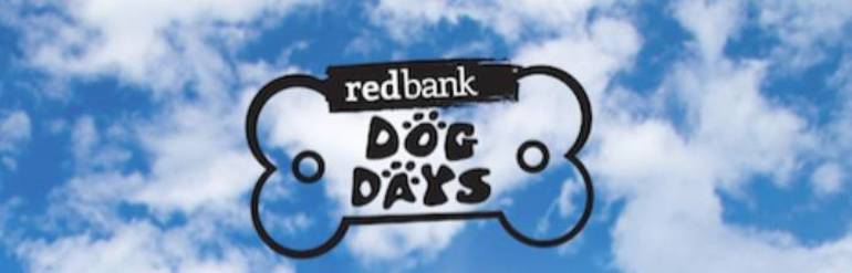 Dog Days Poster.jpg