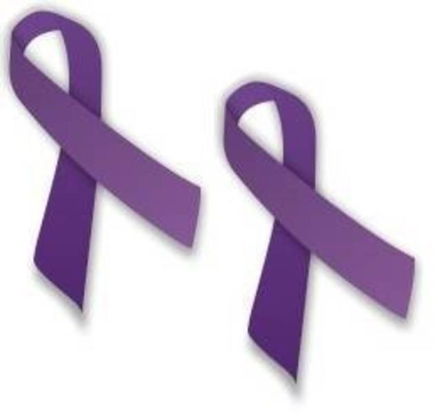 Domestic Violence Ribbons.jpg