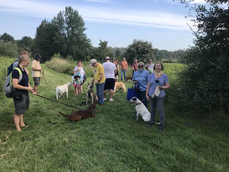 Dog walks at Lord Stirling Stable in Basking Ridge