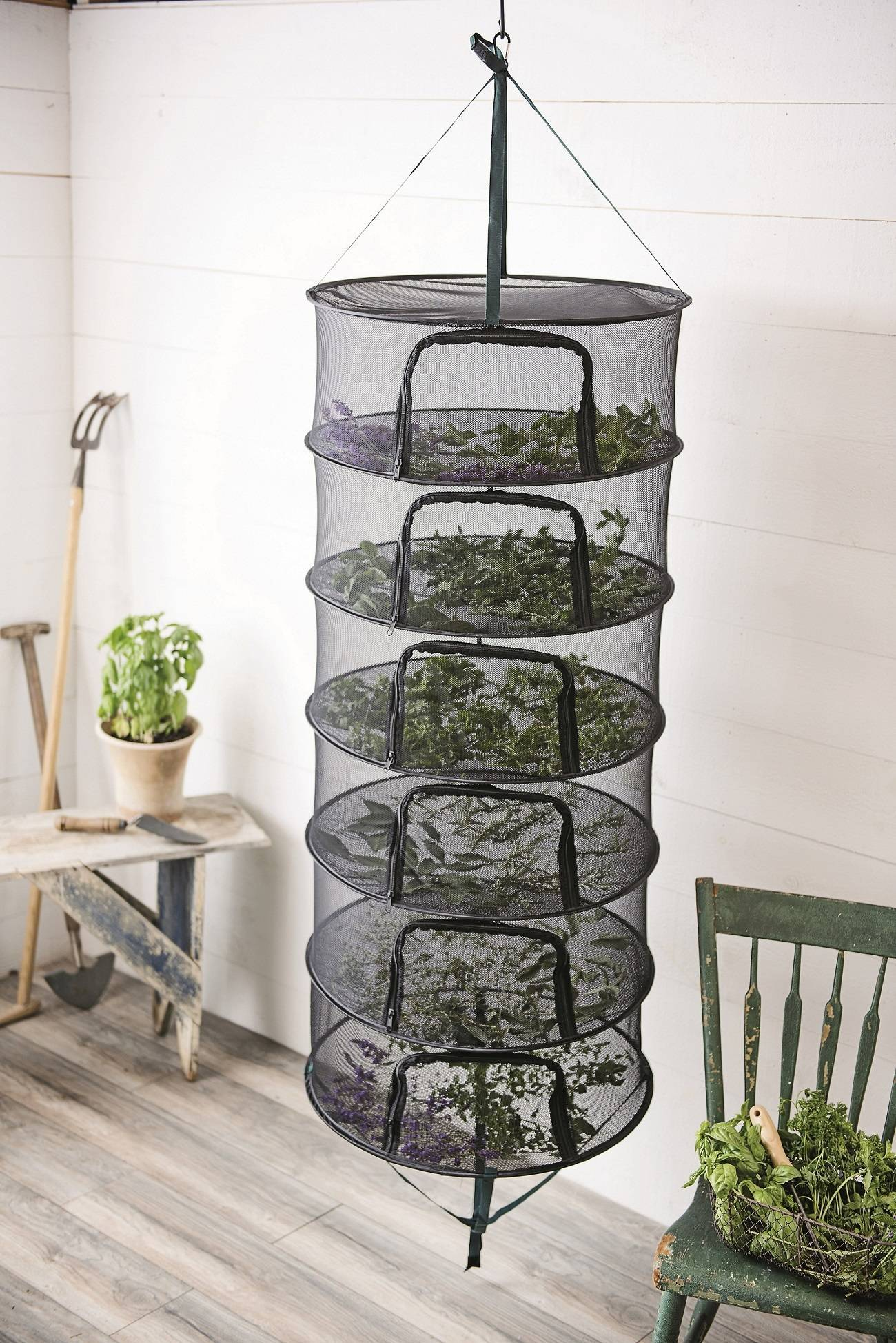Drying is one of the easiest ways to preserve garden-fresh herbs.
