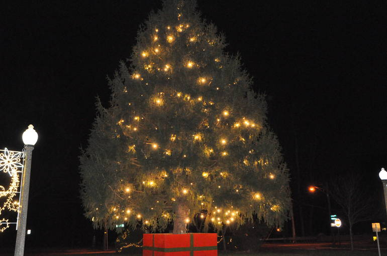 Springfield Brings in the Holidays With Virtual Tree Lighting