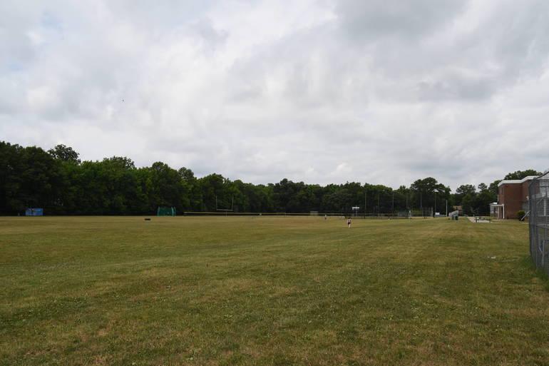 edison school fields westfield nj