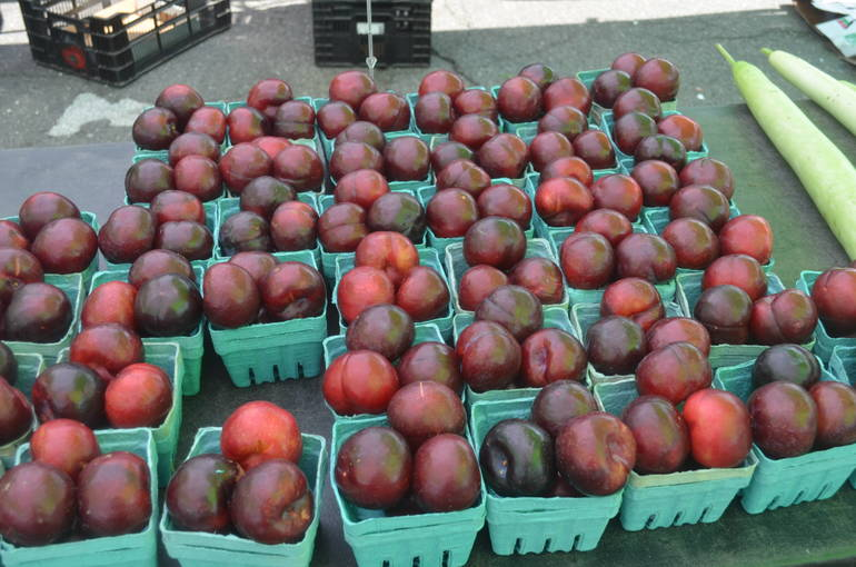 Scenes from the Scotch Plains Farmers Market - Plums