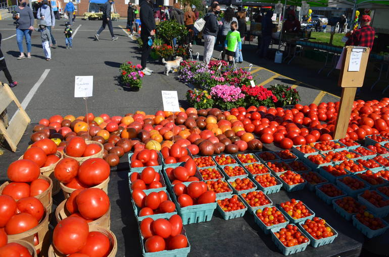 Scenes from the 2021 Opening of the Scotch Plains Farmers Market on May 1