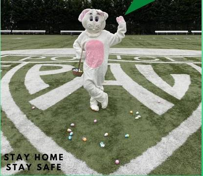 Top story c33d414695c23240a582 easter bunny