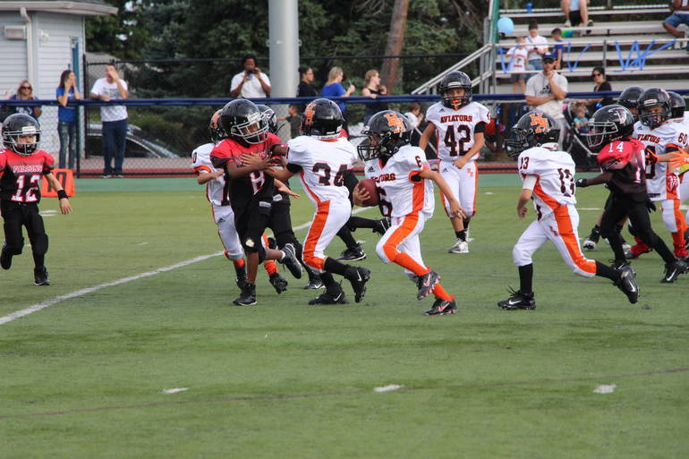 EDIT Mites for for endzone USE.jpg