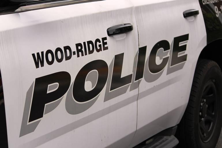Wood-Ridge polic car