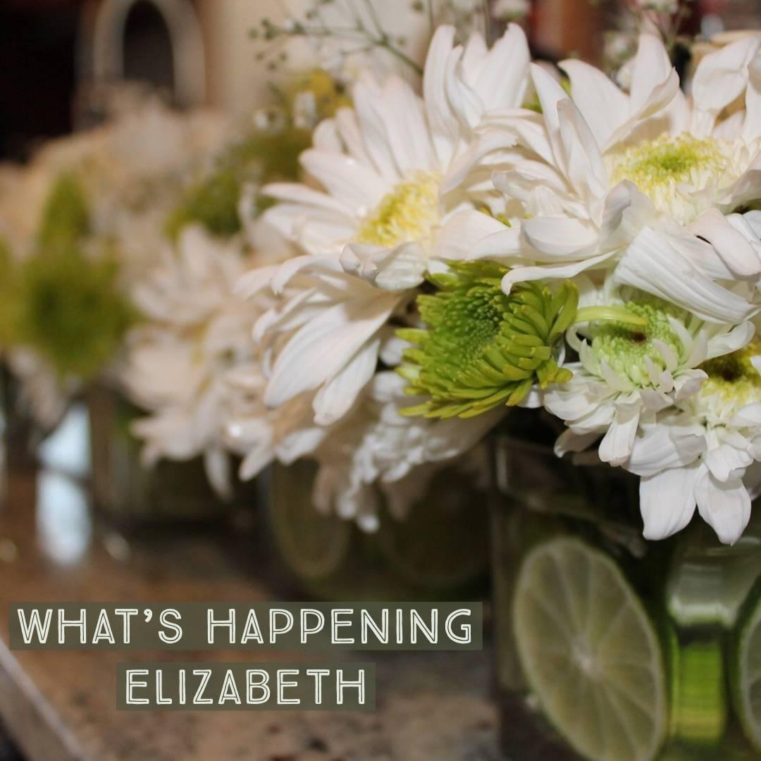 Elizabeth Spring.JPG