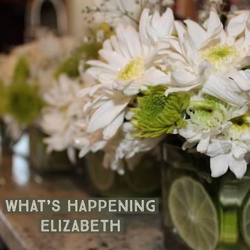 Top story 673445924f020788775f elizabeth spring