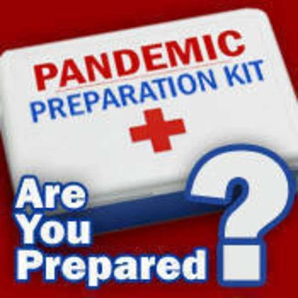Virtual Presentation: Planning For Pandemics and Beyond at Somers Library