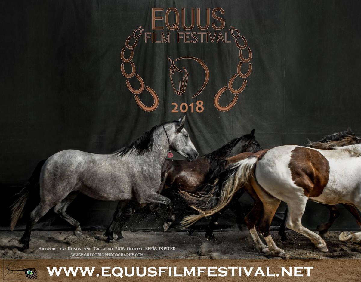 equus film.JPG