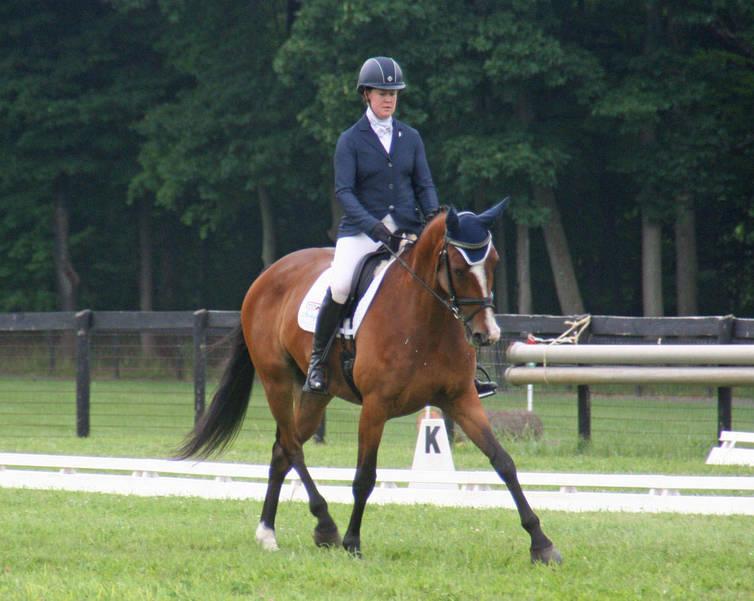 essexhorse trials dressage013.jpg
