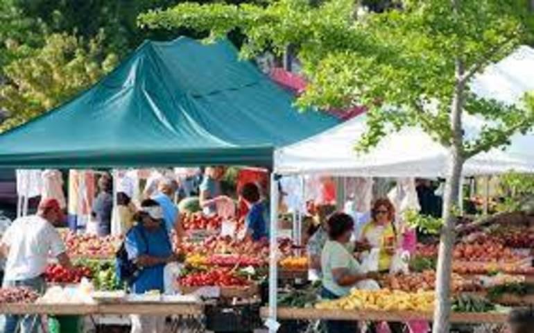 Farm market.jpg