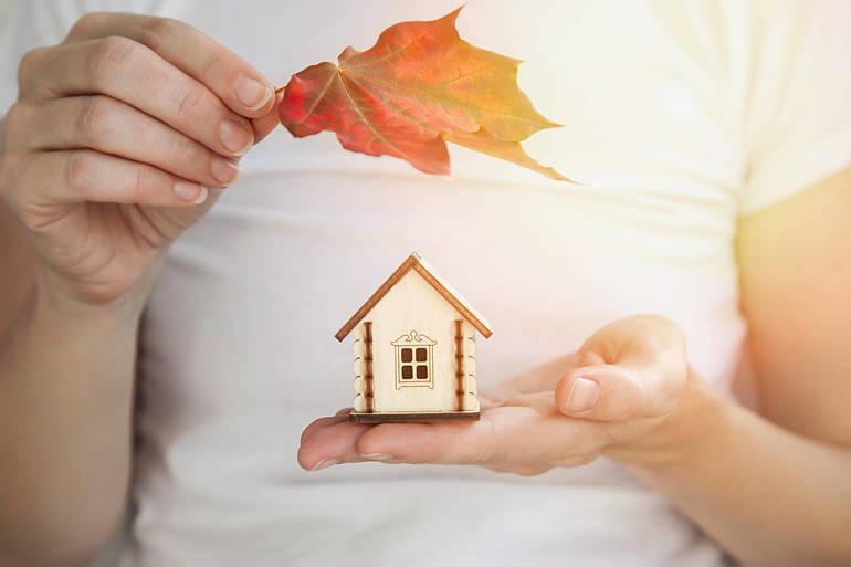 fall house home buyer leaf.jpg