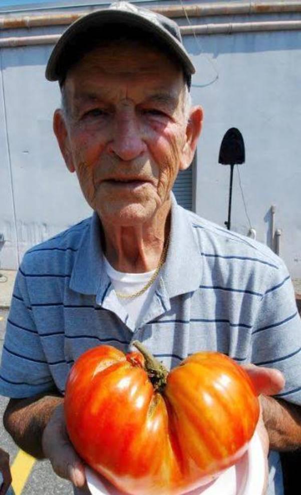 Farmers Market Tomato 2018 b.JPG