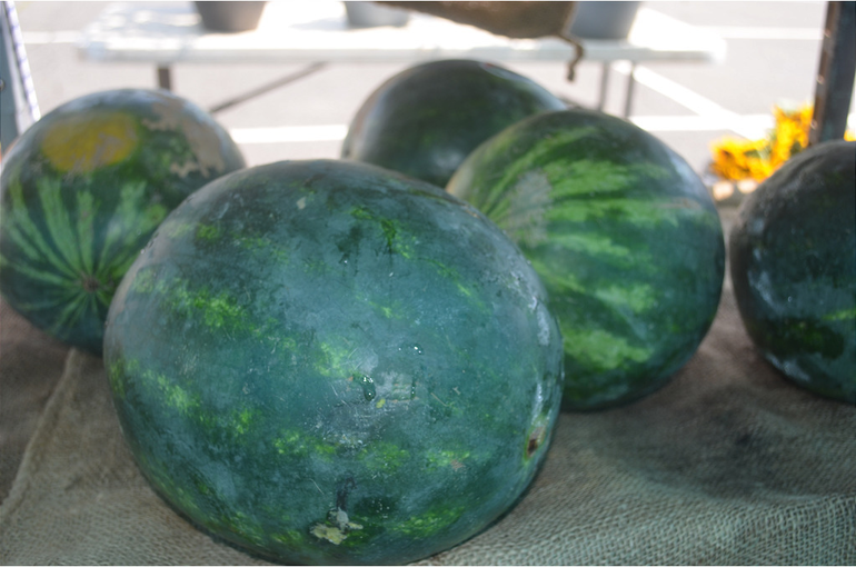 Farmers Market - watermelons 72520.png