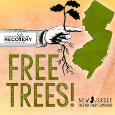 Free Tree Seedling Distribution on Morning of April 24, High School Parking Lot